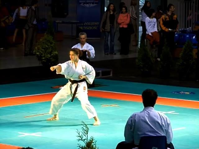 чемпионат Молдовы по каратэ, чемпионат Европы по каратэ