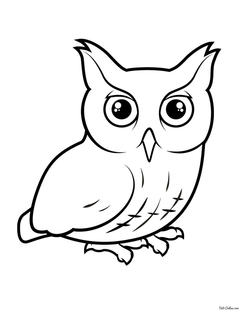 раскраска птицы сова