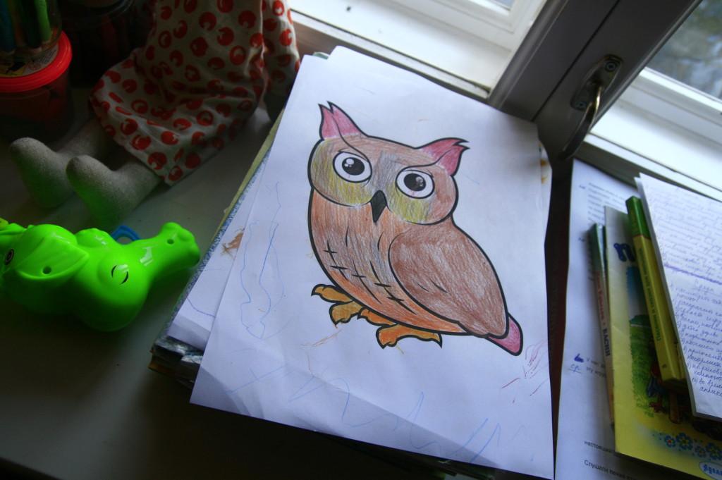 раскраска совы