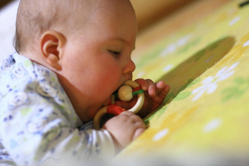 малыш грызёт игрушку