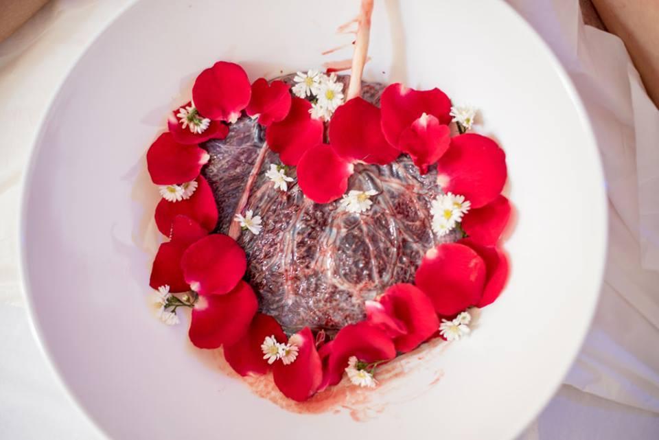 плацента в блюде