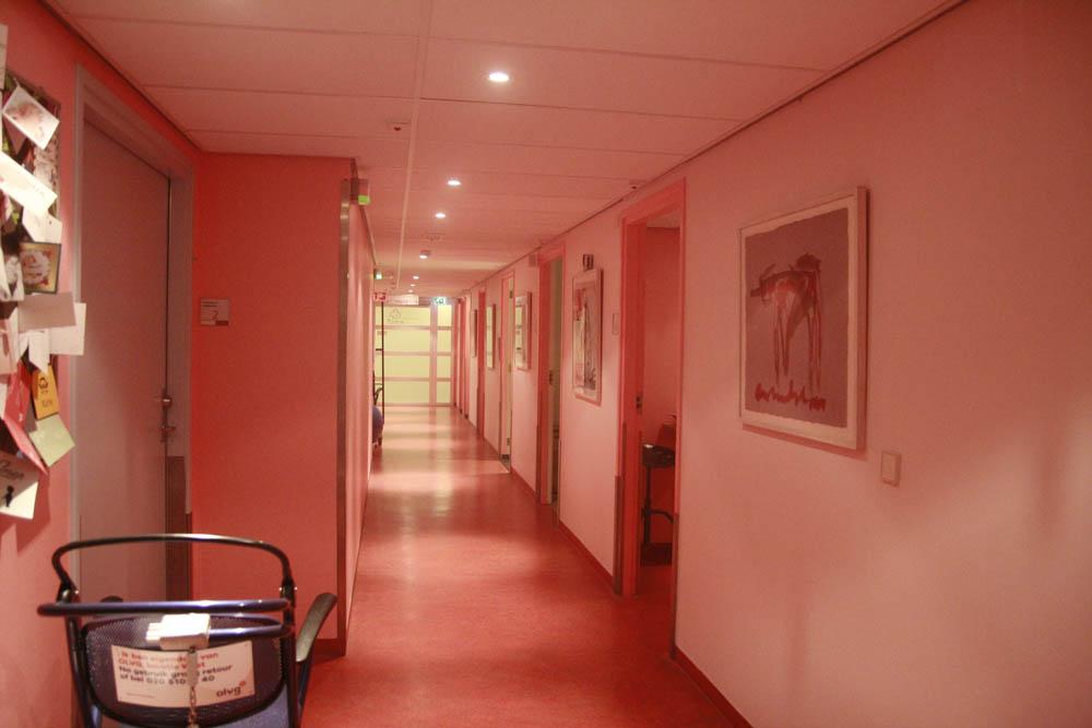 родтльное отделение амстердам