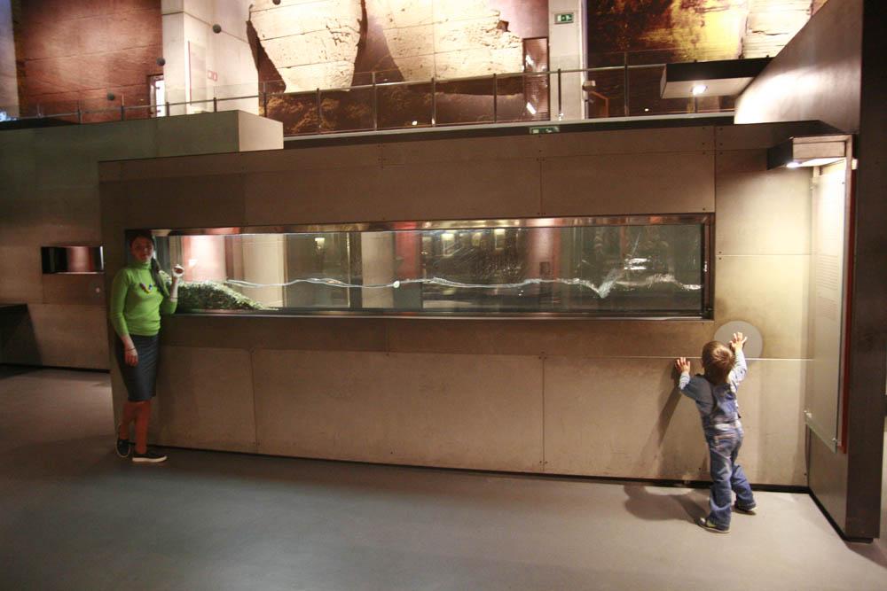 музей CosmoCaixa Барселона