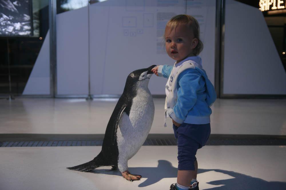 ребёнок с пингвином