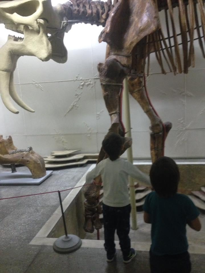 дети в музее