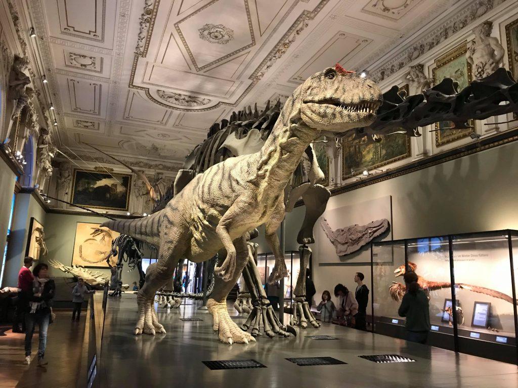 динозавр в музее природы в Вене