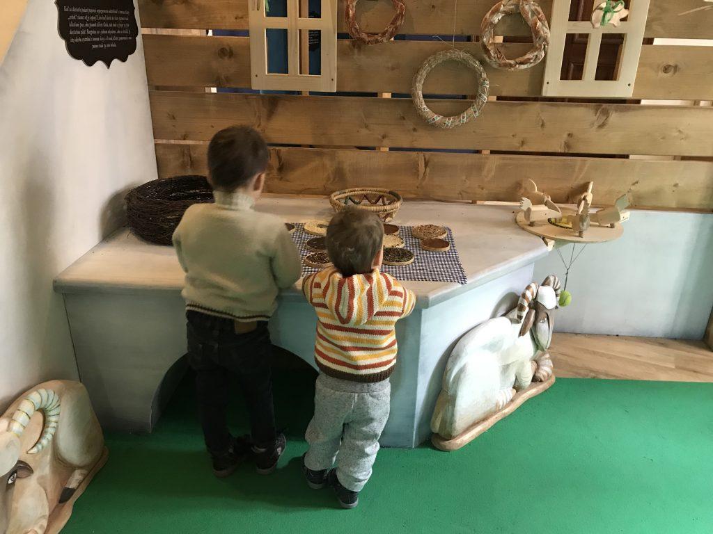 центр для детей Бибиана